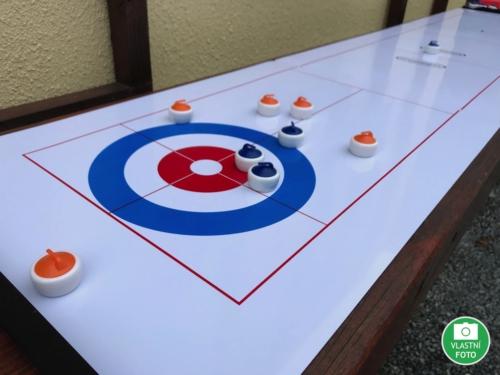 Shuffleboard / Curling